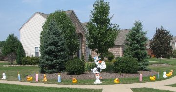 Prank Stork for Bill & Michele