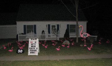 3D Flamingo Flocking